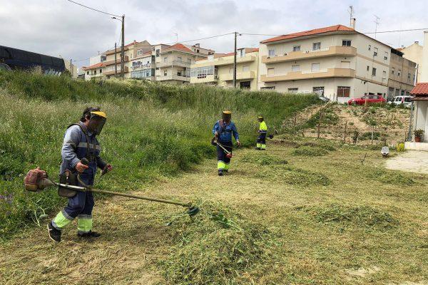 Limpeza de terrenos municipais e deservagem
